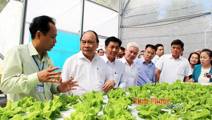 PM attends 20th anniversary of Binh Phuoc's reestablishment  - ảnh 1