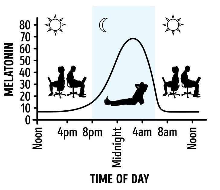 6 điều có thể xảy ra với cơ thể khi bạn ngủ ngoài trời - ảnh 2