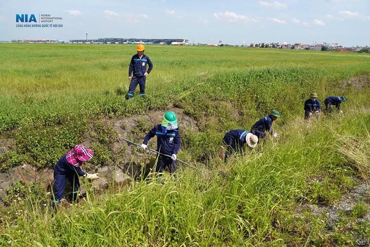 Chùm ảnh: Nhân viên sân bay Nội Bài đẫm mồ hôi làm việc giữa nắng thiêu đốt - ảnh 11