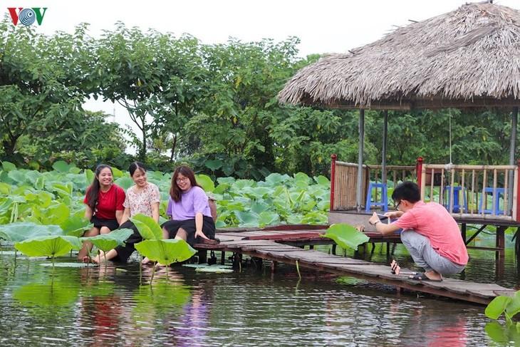 """Lạc vào """"khu vườn cổ tích"""" rực rỡ sắc hồng tường vi ở Hà Nội - ảnh 13"""