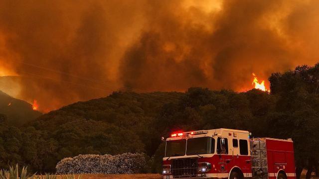 Gigantesques feux de forêt en série aux Etats-Unis et au Canada - ảnh 1