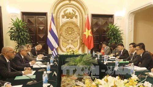 4ème consultation politique des vice-ministres des AE Cuba-Vietnam - ảnh 1