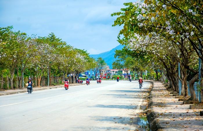 La province de Diên Biên est prête pour la fête des fleurs de bauhinie - ảnh 1