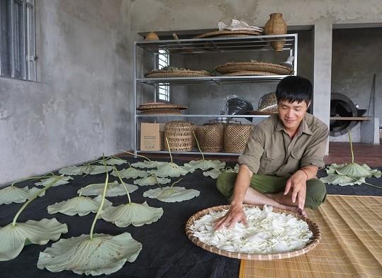 Lê Son Hai et sa marque de thé organique - ảnh 2