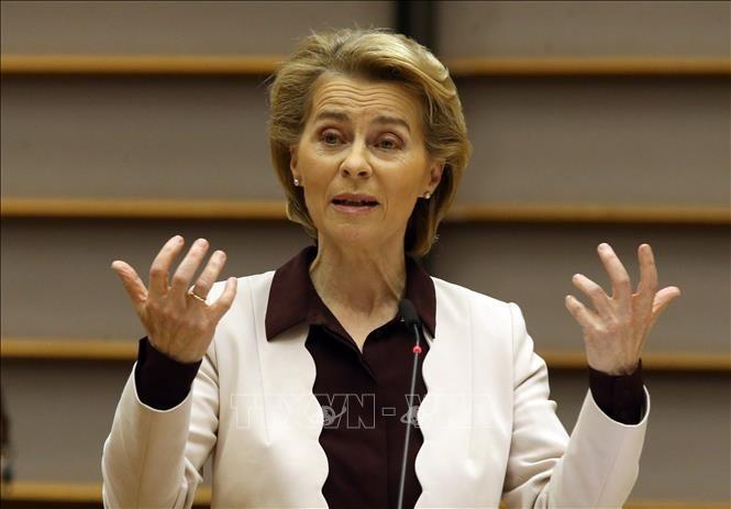 La Commission européenne appelle les 27 à lutter contre les discriminations anti-Roms  - ảnh 1