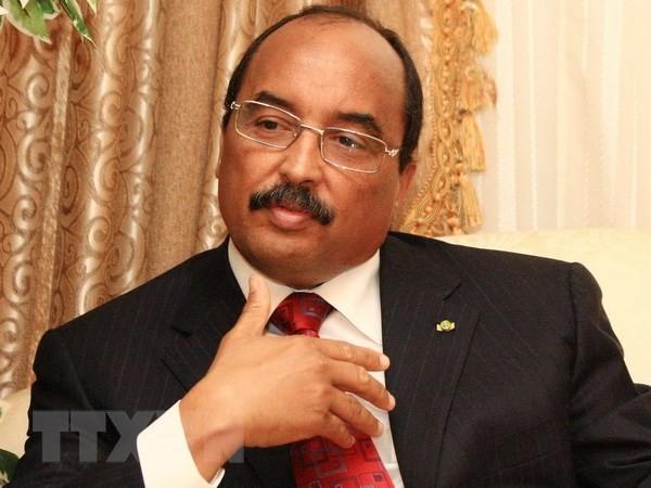 Mauritanie : le gouvernement du nouveau Premier ministre est formé - ảnh 1