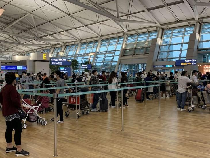 313 Vietnamiens rapatriés de République de Corée - ảnh 1
