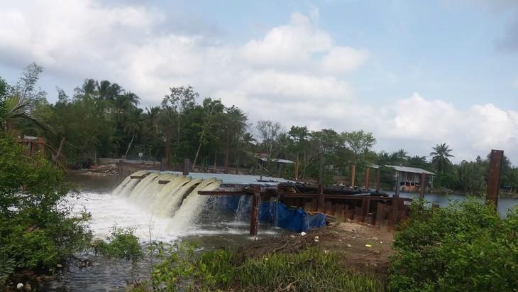 Delta du Mékong: pour une meilleure adaptation au changement climatique - ảnh 1
