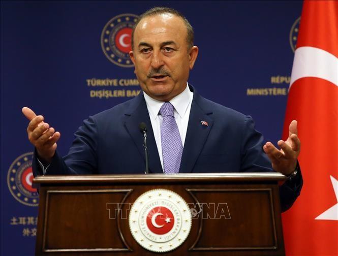 Le ministre turc des Affaires étrangères rencontre son homologue américain - ảnh 1