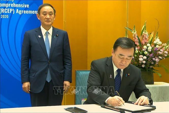 Le Japon ratifie officiellement le RCEP - ảnh 1