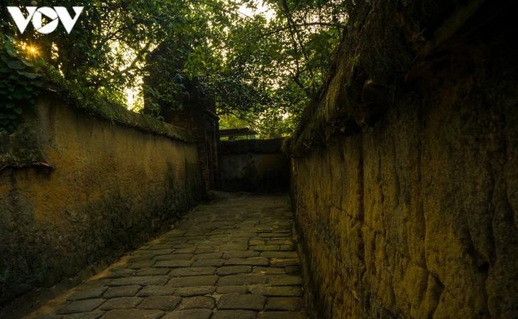 Chiều an yên ở chùa Bổ Đà - ảnh 3