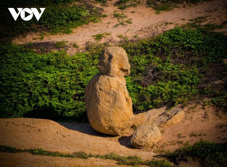 Khu vườn địa đàng đá trên đảo Hòn Cau (Cù Lao Câu) - ảnh 10