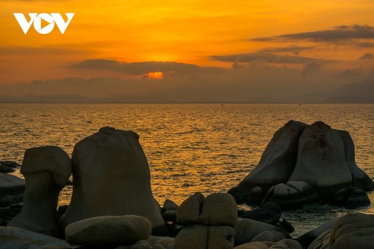 Khu vườn địa đàng đá trên đảo Hòn Cau (Cù Lao Câu) - ảnh 11