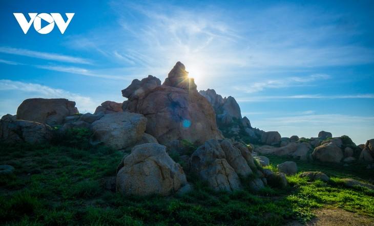 Khu vườn địa đàng đá trên đảo Hòn Cau (Cù Lao Câu) - ảnh 12