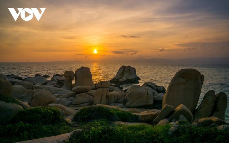 Khu vườn địa đàng đá trên đảo Hòn Cau (Cù Lao Câu) - ảnh 2