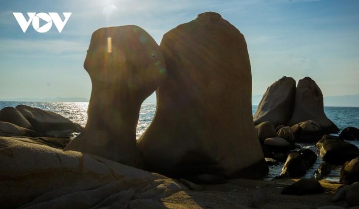 Khu vườn địa đàng đá trên đảo Hòn Cau (Cù Lao Câu) - ảnh 6
