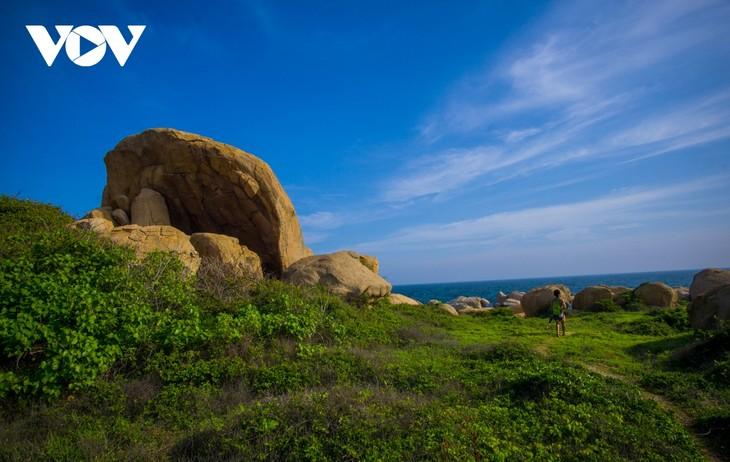 Khu vườn địa đàng đá trên đảo Hòn Cau (Cù Lao Câu) - ảnh 7