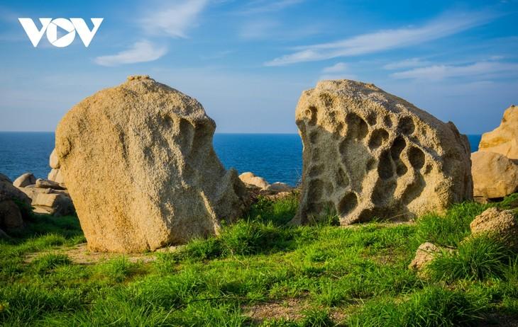 Khu vườn địa đàng đá trên đảo Hòn Cau (Cù Lao Câu) - ảnh 9