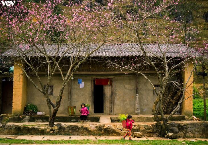 Những địa điểm du lịch ở Việt Nam thu hút khách du lịch đầu năm 2021 - ảnh 5