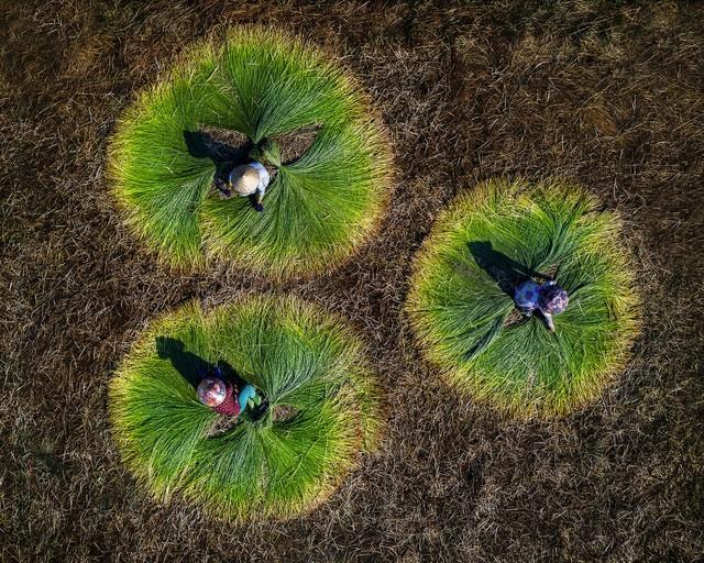 Ảnh người phụ nữ phơi cá của Việt Nam là bức ảnh du lịch đẹp nhất - ảnh 7