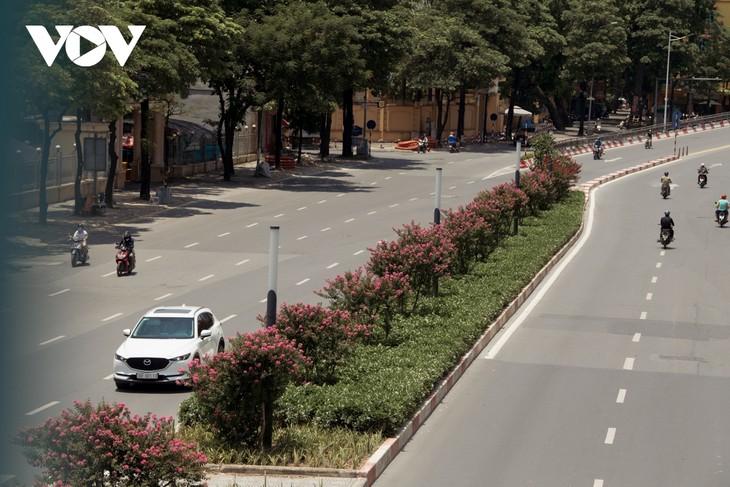 """Ngắm hoa tường vi khoe sắc trên con đường từng được mệnh danh """"đẹp nhất Việt Nam"""" - ảnh 15"""