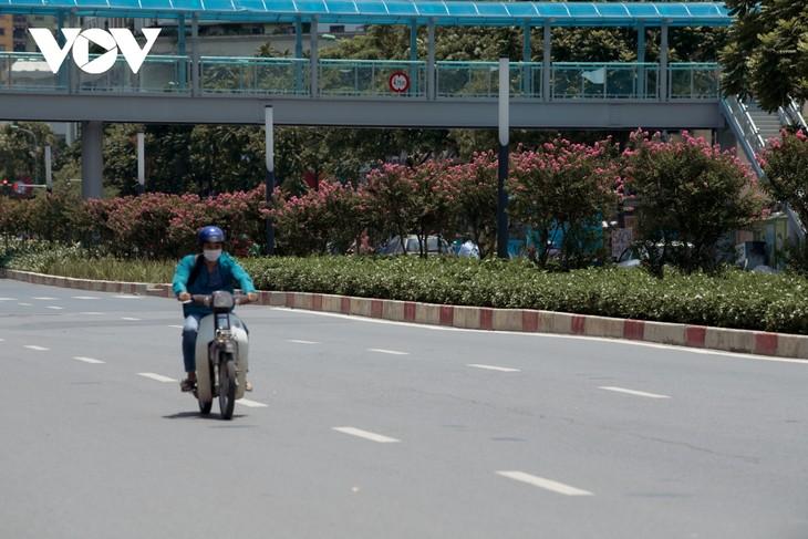 """Ngắm hoa tường vi khoe sắc trên con đường từng được mệnh danh """"đẹp nhất Việt Nam"""" - ảnh 12"""