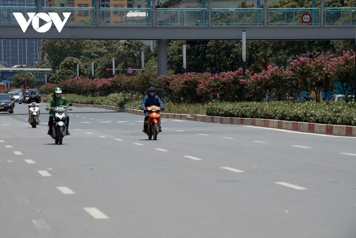 """Ngắm hoa tường vi khoe sắc trên con đường từng được mệnh danh """"đẹp nhất Việt Nam"""" - ảnh 11"""