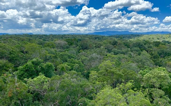 Việt Nam có thêm 2 khu dự trữ sinh quyển thế giới - ảnh 10