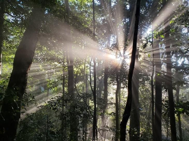 Việt Nam có thêm 2 khu dự trữ sinh quyển thế giới - ảnh 11