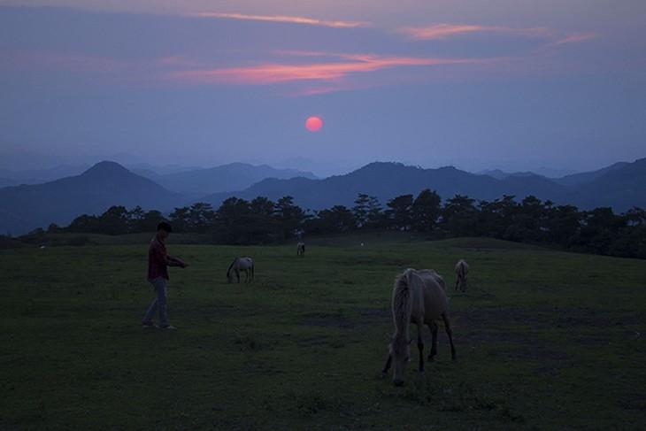 """Thăm """"bạch mã"""" ở thảo nguyên Khau Sao, Lạng Sơn - ảnh 14"""