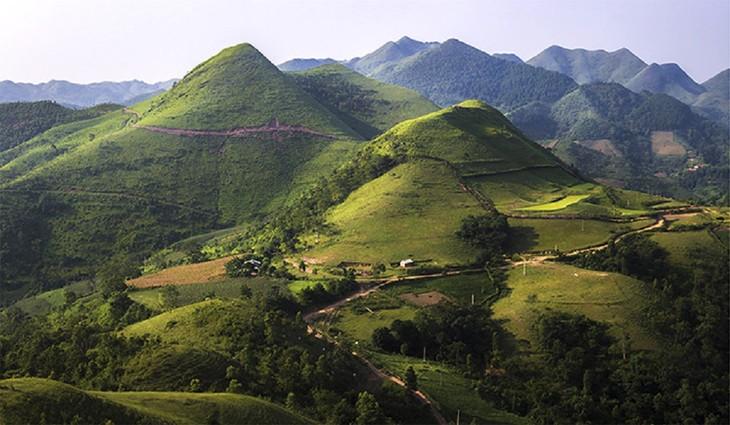 """Thăm """"bạch mã"""" ở thảo nguyên Khau Sao, Lạng Sơn - ảnh 1"""