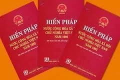 92年憲法改正案に関心を寄せる在仏ベトナム人 - ảnh 1