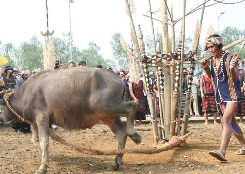 ブラオ族の伝統的祭り - ảnh 2