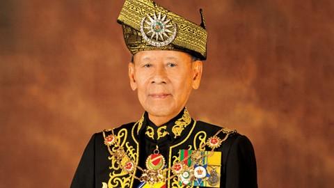 マレーシア国王、ベトナム訪問を開始 - ảnh 1
