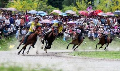 バクハ県の競馬 - ảnh 2