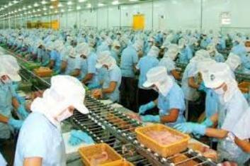 米国、ベトナム水産物の最大輸出市場 - ảnh 1