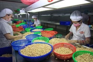 ベトナム、貿易の印象的な伸び率を達成 - ảnh 1