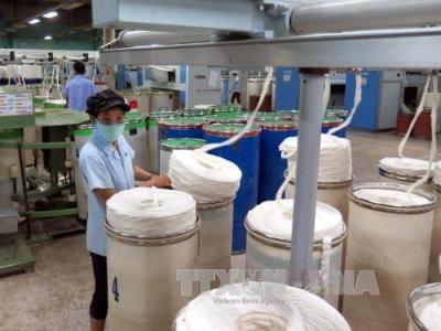 ベトナム・メキシコの紡績・縫製分野での協力に基盤づくり - ảnh 1