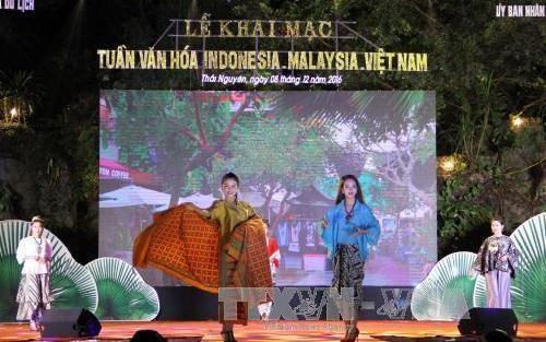 タイグェン市で「マレーシア・インドネシア・ベトナム文化週間」イベント終わる - ảnh 1