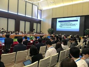 APEC SOM=第2回APEC 高級実務者会合の閉会 - ảnh 1
