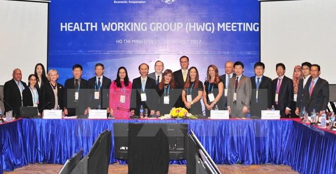 APECのHWG 2=保健作業部会第2回会議が始まる - ảnh 1