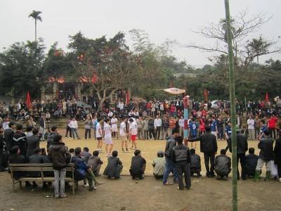 独特な民間遊戯を披露するゴックタン集落の祭り - ảnh 1