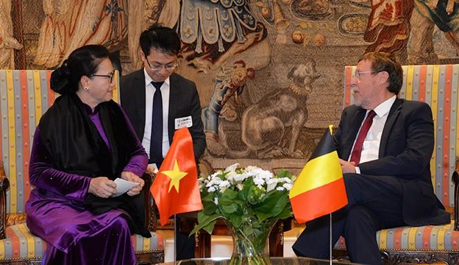 ガン国会議長、ベルギーを訪問中 - ảnh 1