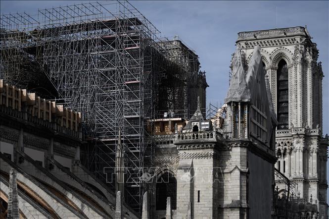 仏ノートルダム大聖堂の再建を再開 新型ウイルス流行で遅れ - ảnh 1