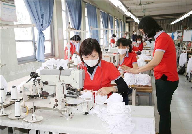 紡績縫製部門、マスク輸出チャンスをつかむ - ảnh 1