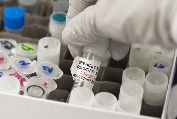 英政府、新型コロナ「ワクチン開発成功なら9月までに3000万本」 - ảnh 1