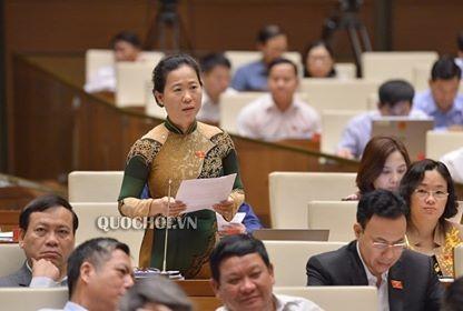 国会、青年法改正案を討議 - ảnh 1
