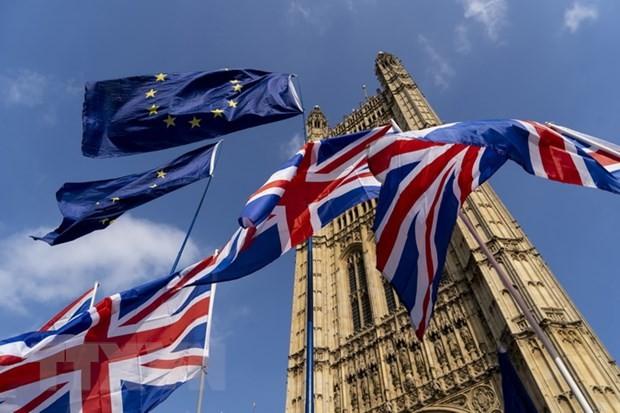 英首相、欧州委員長との離脱後交渉を月内開催へ=FT - ảnh 1