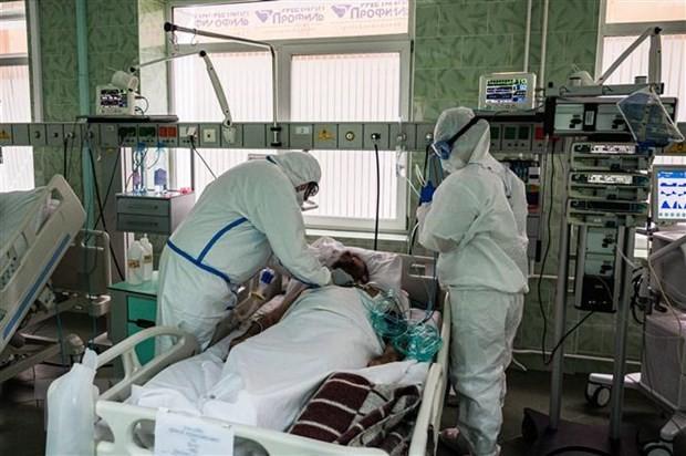 世界の感染者826万1260人 死者44万5012人 新型コロナウイルス - ảnh 1