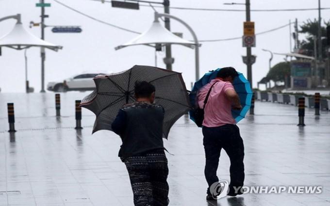 台風10号 韓国で2人行方不明、文大統領「緊張維持を」 - ảnh 1